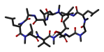 Ciclosporin-A-neutron-3D-sticks.png